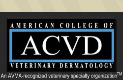 acvd org | Find Dermatologist | Veterinarians with